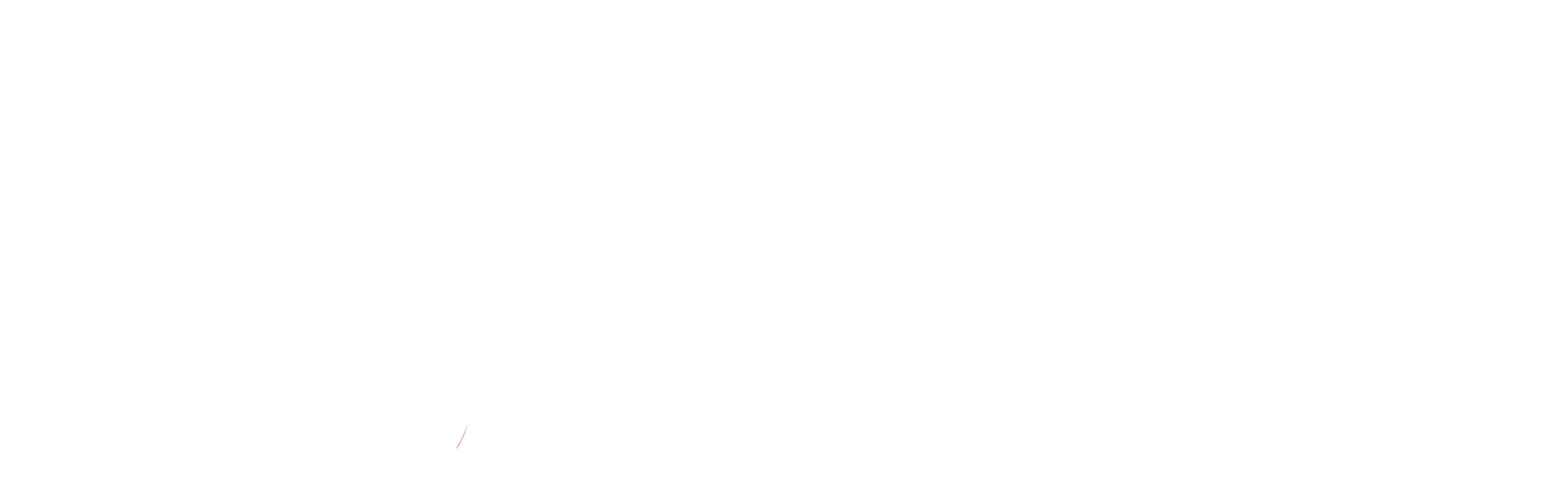 WeTranslate logo white
